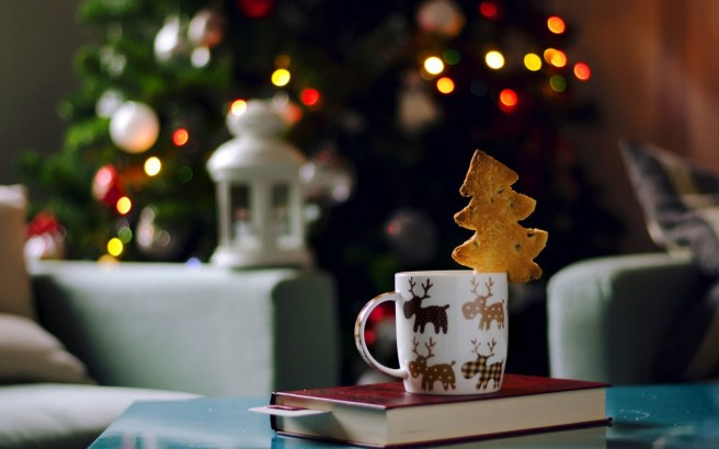 mug-cup-cookies-book-christmas-tree-lights-garland-holiday-new-year-1